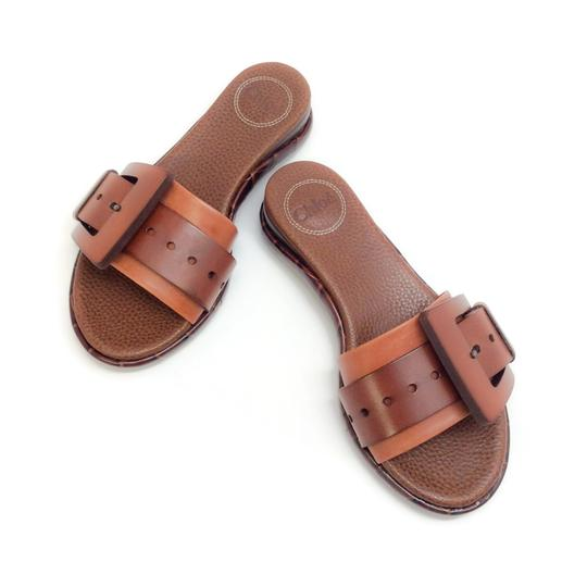 Chloé Mustang Brown Sandals Image 0