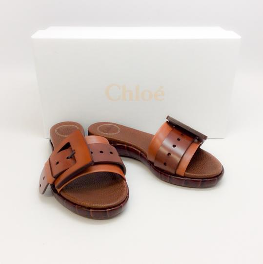 Chloé Mustang Brown Sandals Image 8