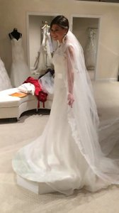 Mikaella Bridal Neautral Contains Lace Gown Traditional Wedding Dress Size 4 (S)