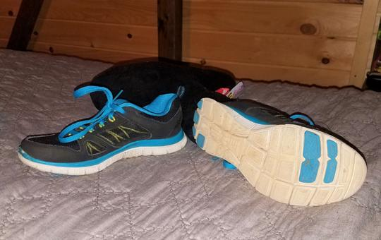 Sketchers Tennis Black/Blue Athletic Image 4