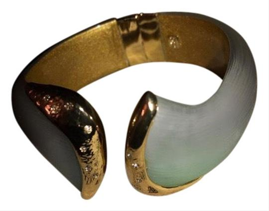 Preload https://img-static.tradesy.com/item/25973936/alexis-bittar-multicolor-bangle-bracelet-0-2-540-540.jpg