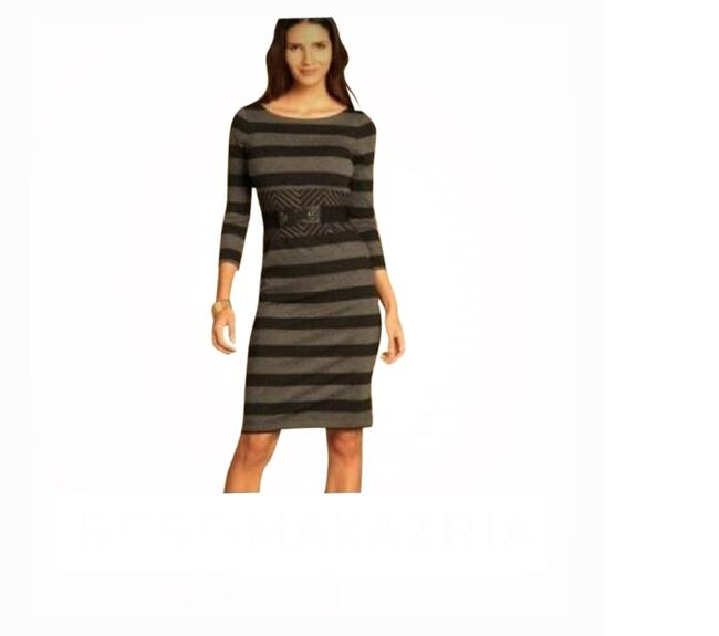 Item - Gray Roslyn Belted Leather Striped Trimmed A-line Mid-length Short Casual Dress Size 4 (S)