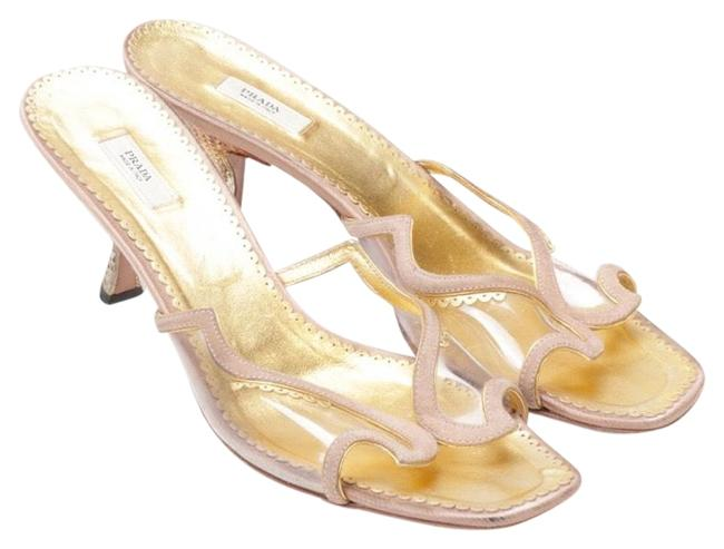 Item - Nude Pink Gold Lucite Heel Slide Sandals Size EU 39.5 (Approx. US 9.5) Regular (M, B)
