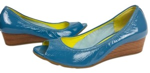 Cole Haan Blue Wedges