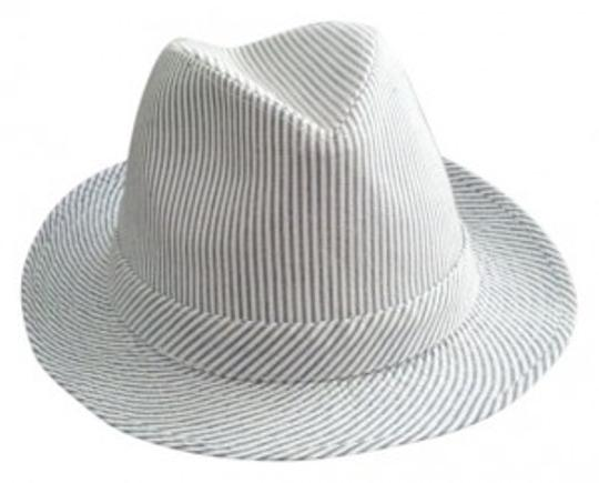 Preload https://img-static.tradesy.com/item/26080/american-eagle-outfitters-blue-seersucker-fedora-hat-0-0-540-540.jpg