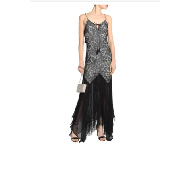 Preload https://img-static.tradesy.com/item/26134225/haute-hippie-chantilly-fringed-lace-and-chiffon-gown-sz0-long-night-out-dress-size-0-xs-0-0-650-650.jpg