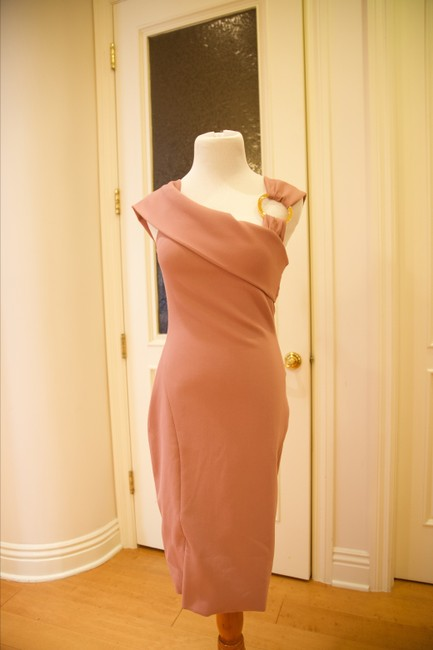 Haney Stretchy Fitted Dress Image 1
