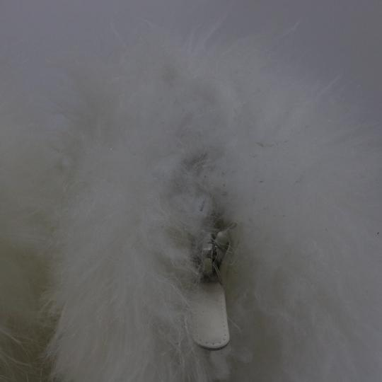 Chanel Runway Fur Fur white Boots Image 10