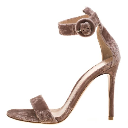 Gianvito Rossi Embroidered Velvet Ankle Strap Pink Sandals Image 5