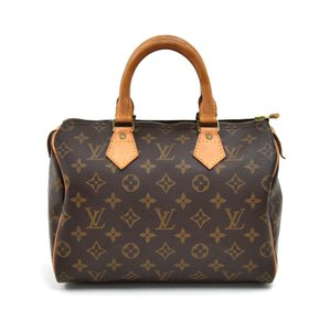 Louis Vuitton Hobo Bag - item med img