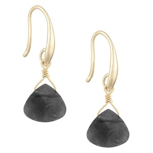 The Sak Metal Natural Stone Hook Back Briolette Womens Drop Earrings