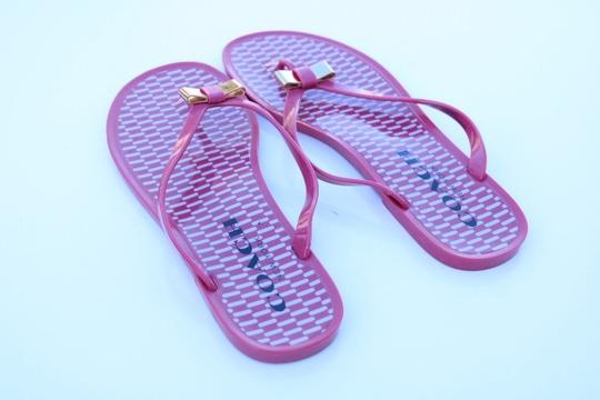 Coach pink Sandals Image 4