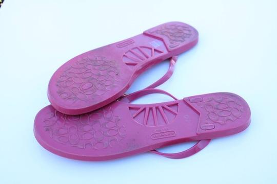 Coach pink Sandals Image 6