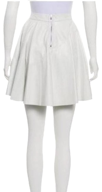 Preload https://img-static.tradesy.com/item/26250463/timo-weiland-white-mini-leather-skirt-size-4-s-27-0-1-650-650.jpg