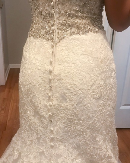 Allure Bridals Ivory Lace/Beading - Fit & Flare Formal Wedding Dress Size 4 (S) Image 6