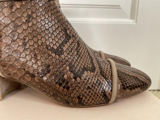 Alexandre Birman Snakeskin Suede Leather Brown Boots Image 5