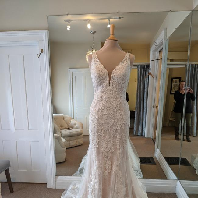 Essense of Australia Ivory Maple Lace Over Imperial Crepe D2562 Formal Wedding Dress Size 8 (M) Essense of Australia Ivory Maple Lace Over Imperial Crepe D2562 Formal Wedding Dress Size 8 (M) Image 1
