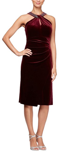 Preload https://img-static.tradesy.com/item/26409173/alex-evenings-wine-velvet-embellished-shift-mid-length-formal-dress-size-8-m-0-1-650-650.jpg