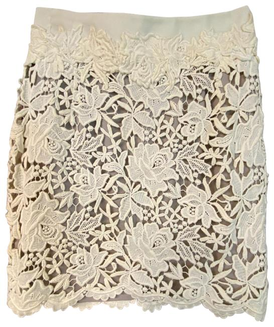 Preload https://img-static.tradesy.com/item/26412216/elie-tahari-beige-embroidered-pencil-skirt-size-12-l-32-33-0-1-650-650.jpg