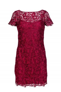 Aidan Mattox Fuchsia Lace Dress