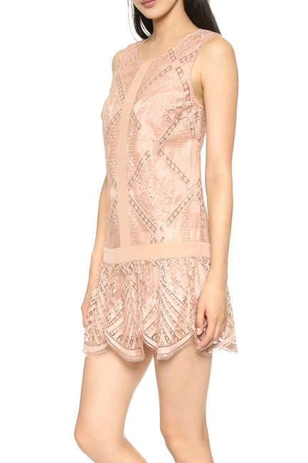 Twelfth St. by Cynthia Vincent Lace Drop Waist Scalloped Shift Dress Image 2