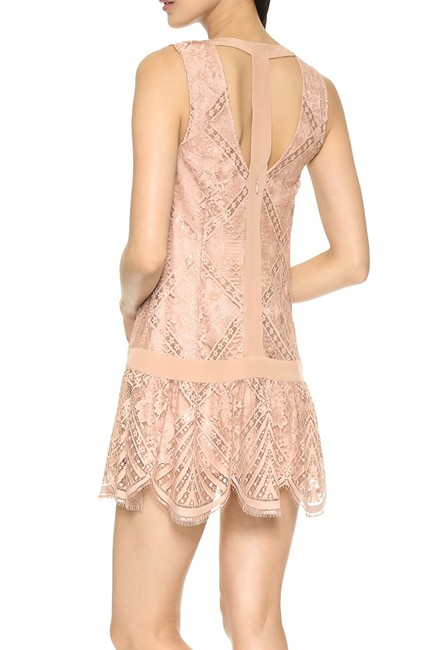 Twelfth St. by Cynthia Vincent Lace Drop Waist Scalloped Shift Dress Image 3