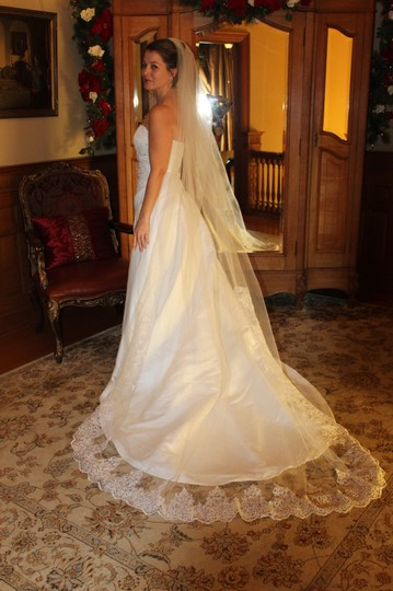Preload https://img-static.tradesy.com/item/26653785/white-long-cathedral-length-bridal-veil-0-0-540-540.jpg