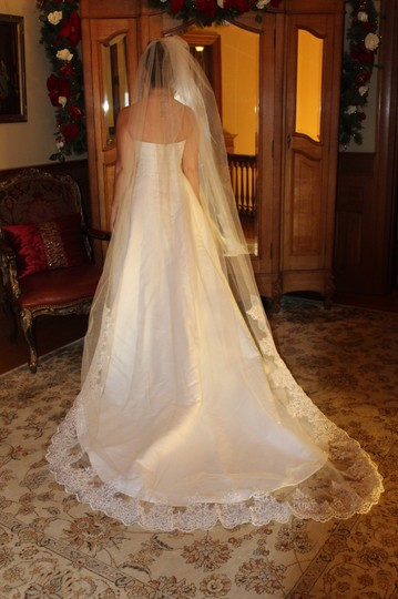White Long Cathedral Length Bridal Veil Image 1