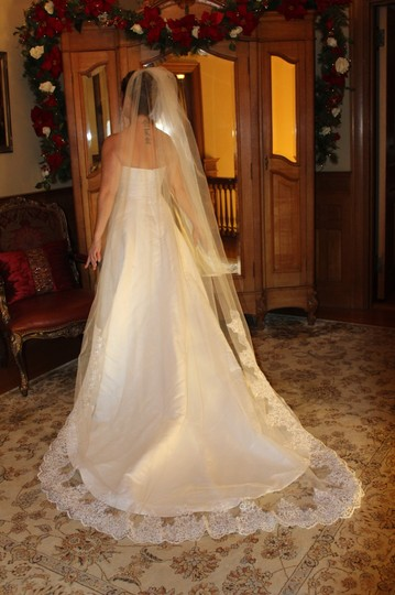 White Long Cathedral Length Bridal Veil Image 2