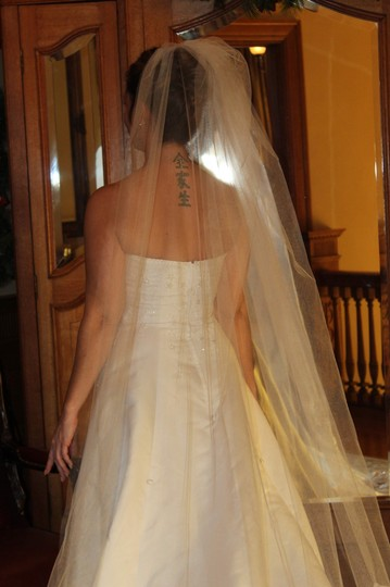 White Long Cathedral Length Bridal Veil Image 3