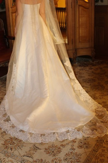 White Long Cathedral Length Bridal Veil Image 4