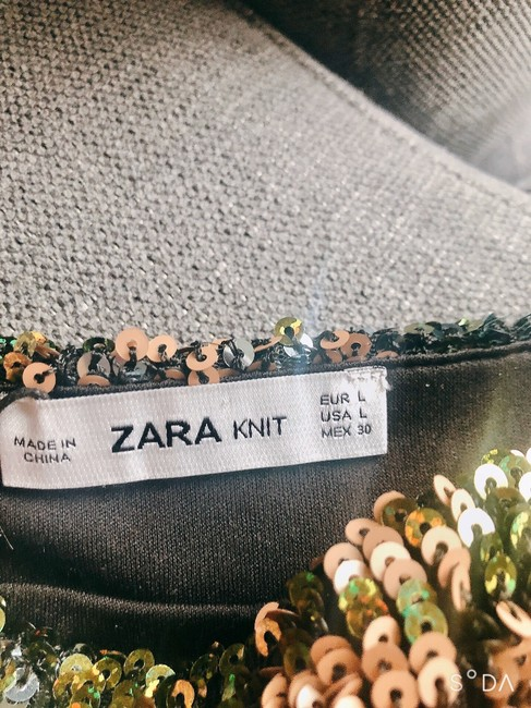 Zara Skirt Multi Image 4