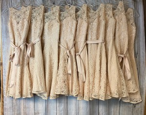 Mori Lee Pink Cotton Lot Of 10 Lace To 8 Casual Bridesmaid/Mob Dress Size OS (one size)
