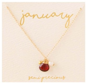Francesca's Francesca's collections January birthstone charm necklace