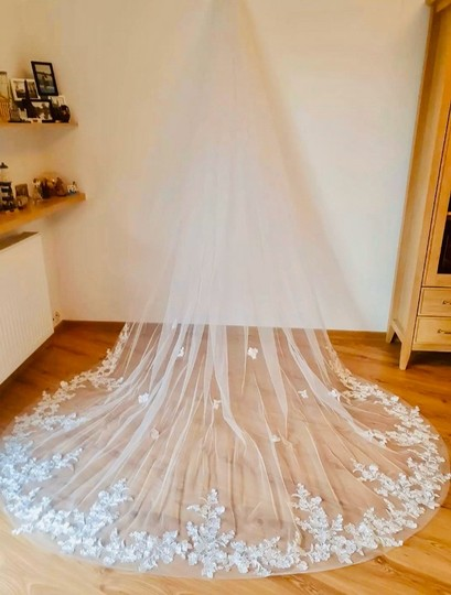 Long White Ivory 3m/10ft Lace Cathedral with Comb Bridal Veil Image 1