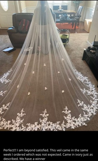 Long White Ivory 3m/10ft Lace Cathedral with Comb Bridal Veil Image 2
