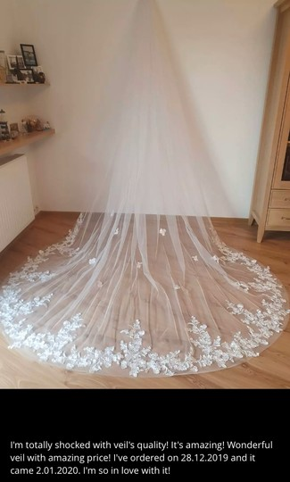 Long White Ivory 3m/10ft Lace Cathedral with Comb Bridal Veil Image 9
