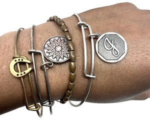Alex and Ani Alex and Ani Charm Bracelet Set of 4 Silver and Brass