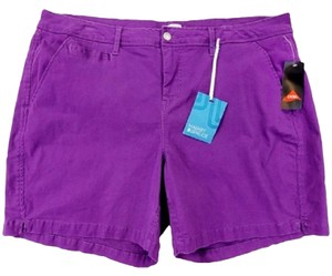 Market & Spruce Purpel Shorts