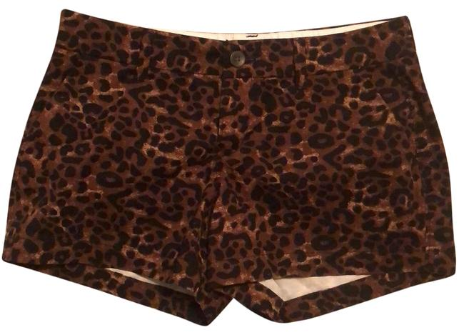 Item - Black and Brown Leopard Print Shorts Size 2 (XS, 26)