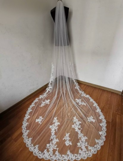 Preload https://img-static.tradesy.com/item/27158734/long-white-ivory-3m10ft-lace-applique-cathedral-bridal-veil-0-0-540-540.jpg