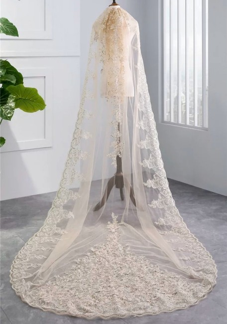 Unbranded Long White/Ivory/Champagne 3m/10ft Lace Sequin Cathedral Bridal Veil Unbranded Long White/Ivory/Champagne 3m/10ft Lace Sequin Cathedral Bridal Veil Image 1
