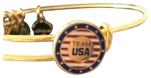 Alex + Alex Alex and ani team USA bracelet New
