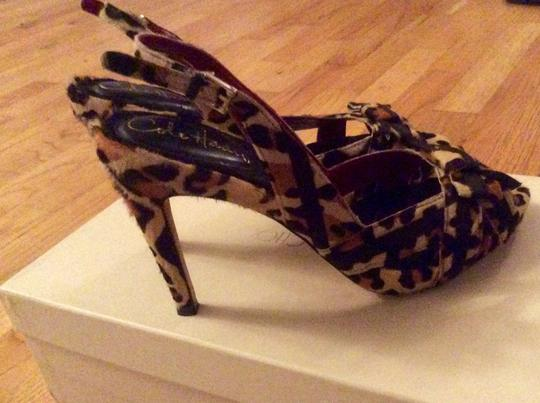 Cole Haan Nike Air Leopard Cheetah Animal Print Classic Multi Color Pumps