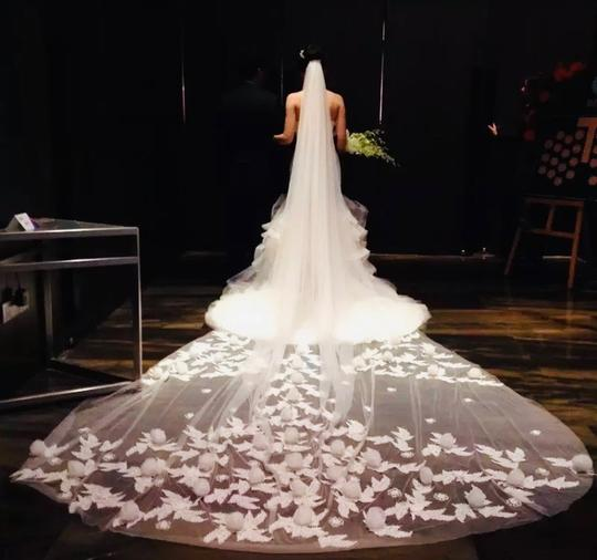 Preload https://img-static.tradesy.com/item/27337964/long-white-or-ivory-1t-3-d-flower-applique-cathedral-with-comb-10ft-13ft-16ft-bridal-veil-0-0-540-540.jpg
