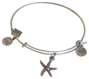 Alex and Ani Alex and Ani ARMS OF STRENGTH NWT