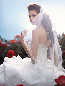 Alfred Angelo Belle Veil Style 103