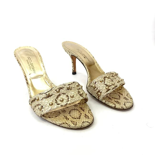 Item - Beige Dolce and Gabana Women's Snake Slip On Mules Sandals Size EU 37.5 (Approx. US 7.5) Regular (M, B)