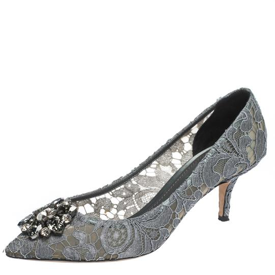Preload https://img-static.tradesy.com/item/27670321/dolce-and-gabbana-grey-crystal-embellished-lace-bellucci-pointed-pumps-size-us-85-regular-m-b-0-0-540-540.jpg
