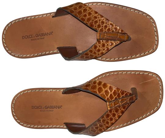 Preload https://img-static.tradesy.com/item/28056332/dolce-and-gabbana-brown-store-floor-sample-exotic-leather-sandals-size-eu-42-approx-us-12-regular-m-0-1-540-540.jpg